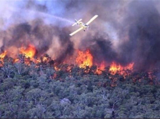 Australian Fire Chiefs Blame Climate Change For Escalating Bush Fires