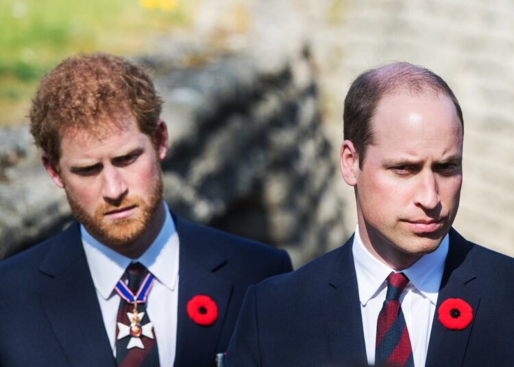 Prince Harry And Prince William's Settled Feud Examined