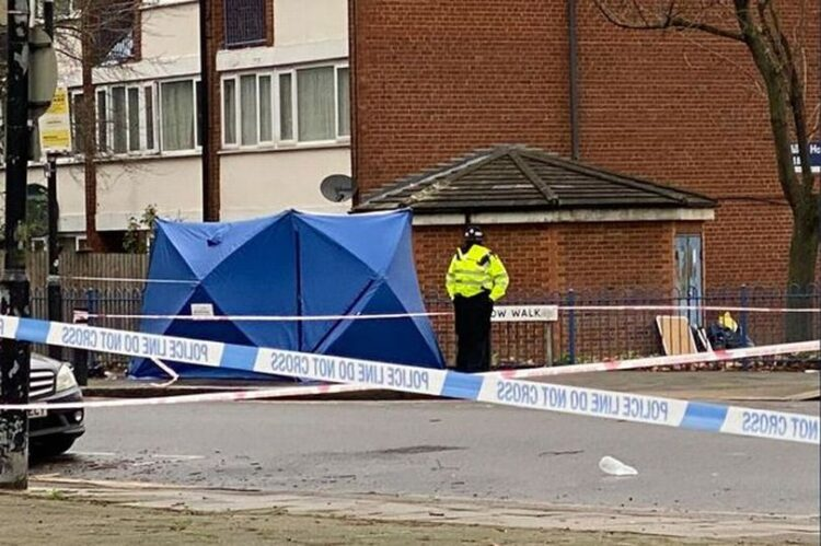 Police Probe Second Murder On West Green Road In One Month