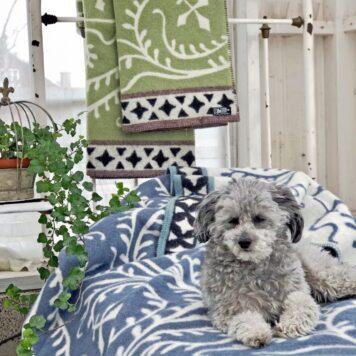 Plaid Decke Wollplaid Wolldecke Weihnachtsgeschenk