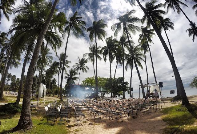 palm trees laiya coco beach