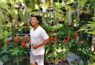 buying plants in silang cavite