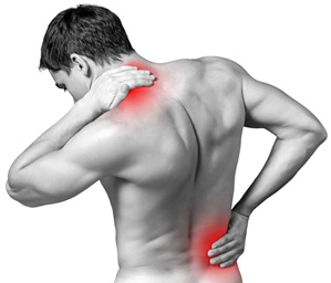 Exercise therapy for chronic musculoskeletal pain Innovation by altering pain memories