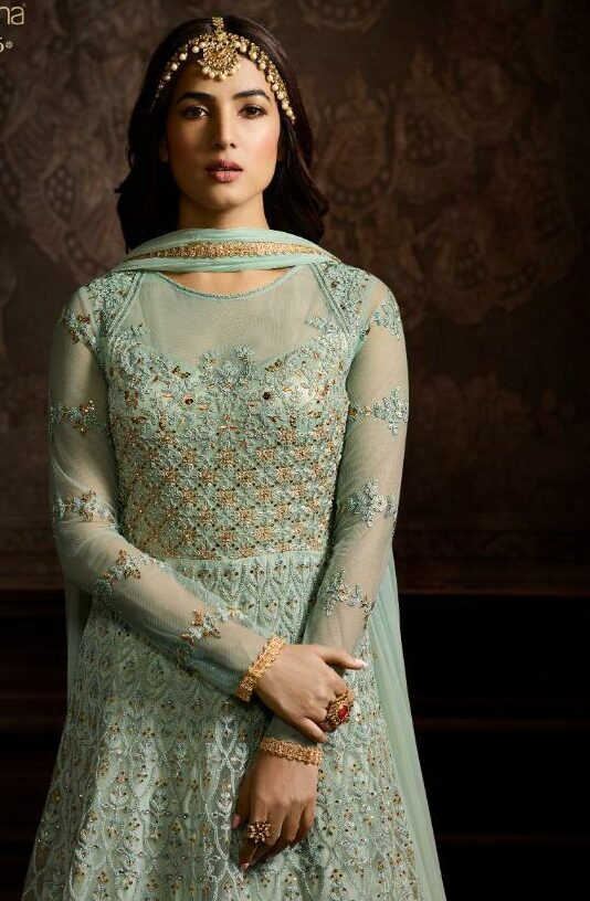 Sky Blue Gown Dress Fully Embroidered for Function Wear