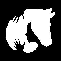Arena 2 - Equestrian Care