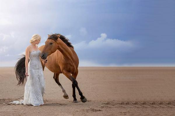 Horsemanship Showcase 2020 - Mia Rodley