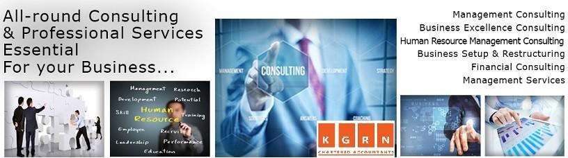 professional auditing services in dubai