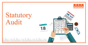 Statutory Audit Service in UAE