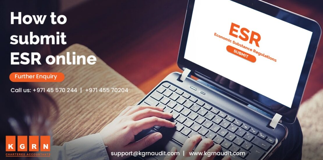 How to Submit ESR Online