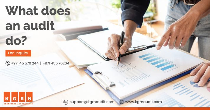 What does an Audit do?