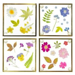 Pressed Flowers Glass Gold Coasters