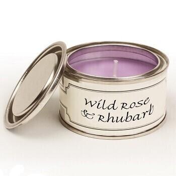 Pintail Paint Pot Candle Wild Rose Rhubarb