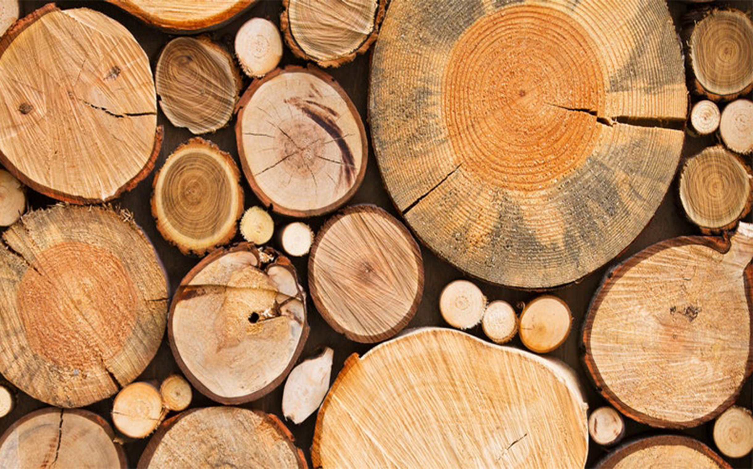 CHOOSE YOUR WOOD