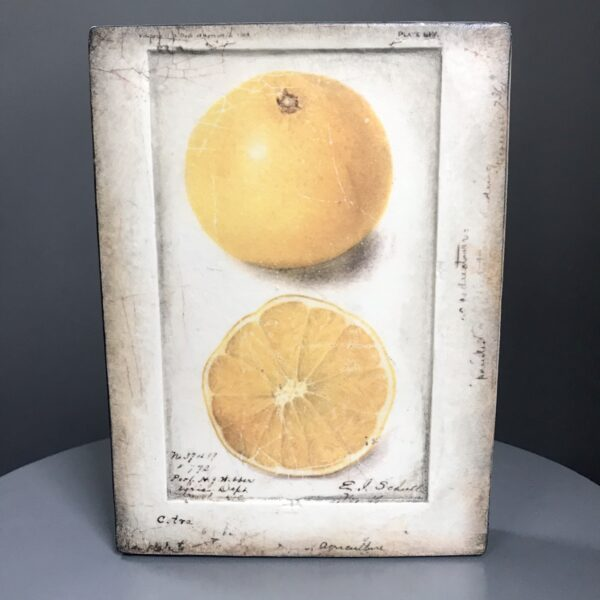 Citron T371 Sid Dickens Memory Blocks which reads 'The spice of life lies in its zest. For its risks and their rewards, once savoured, taste the best.'