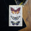 Butterfly Notebook with 3 colourful butterflies