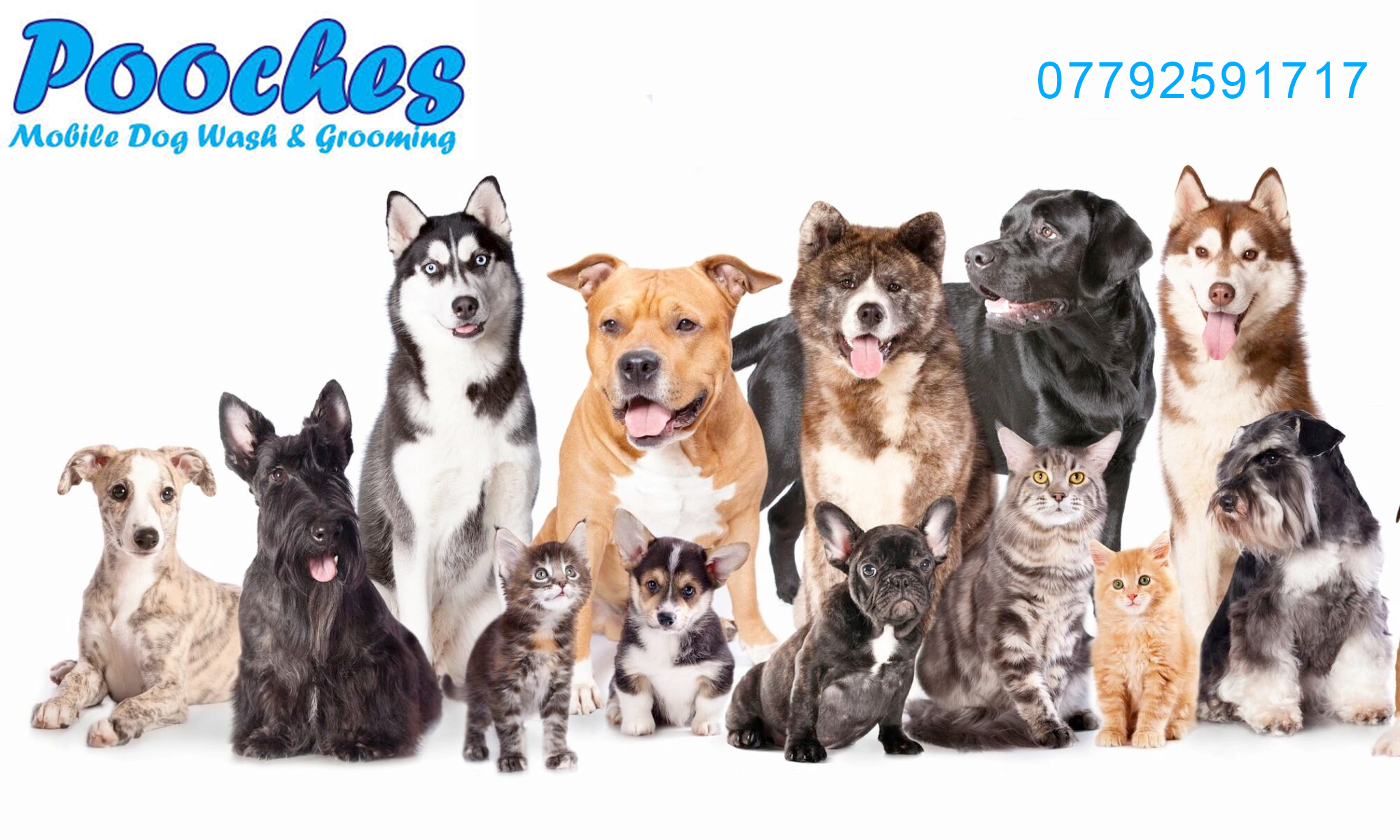 Pooches Mobile Doggrooming