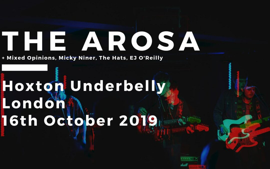 The Arosa // Mixed Opinions // Micky Niner // The Hats // EJ O'Reilly