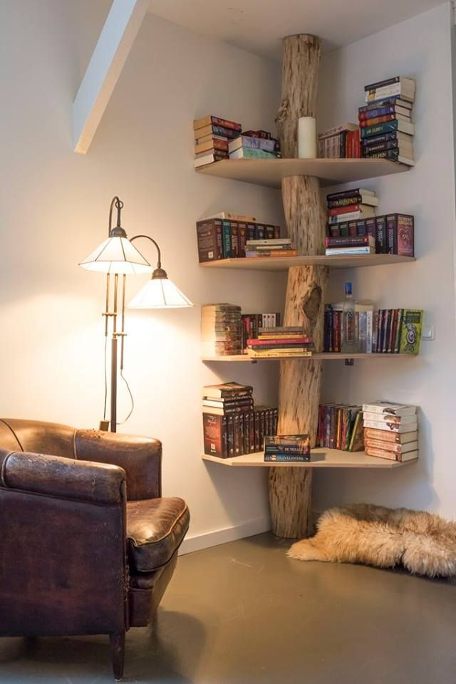 Beautiful Bookshelf