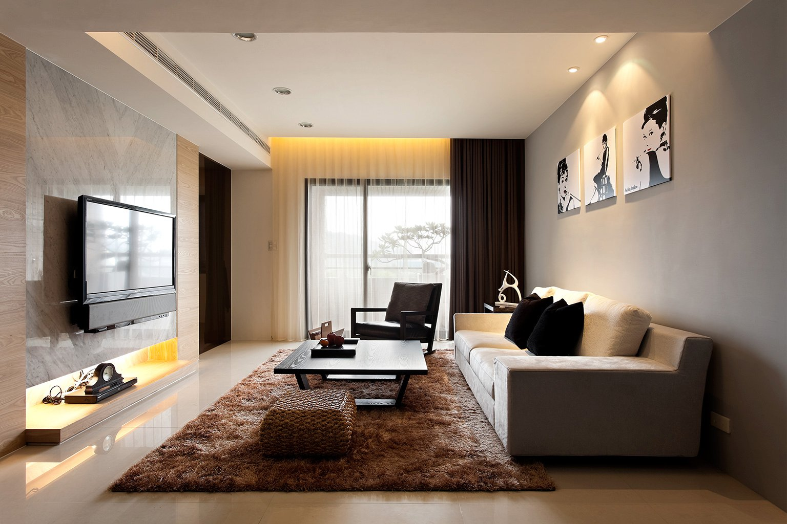 Modern Living Room with Beautiful Rug