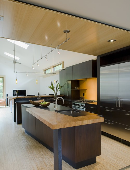 Ultra contemporary kitchen with wooden flooring