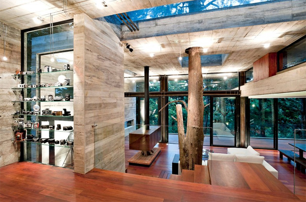 modern house with tree decoration and wooden flooring
