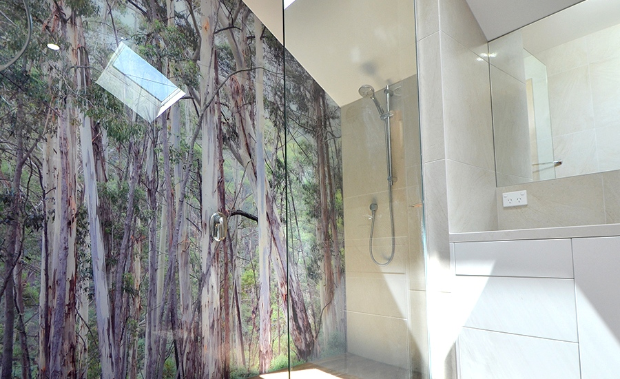 Modern Glass Printed Glass Shower