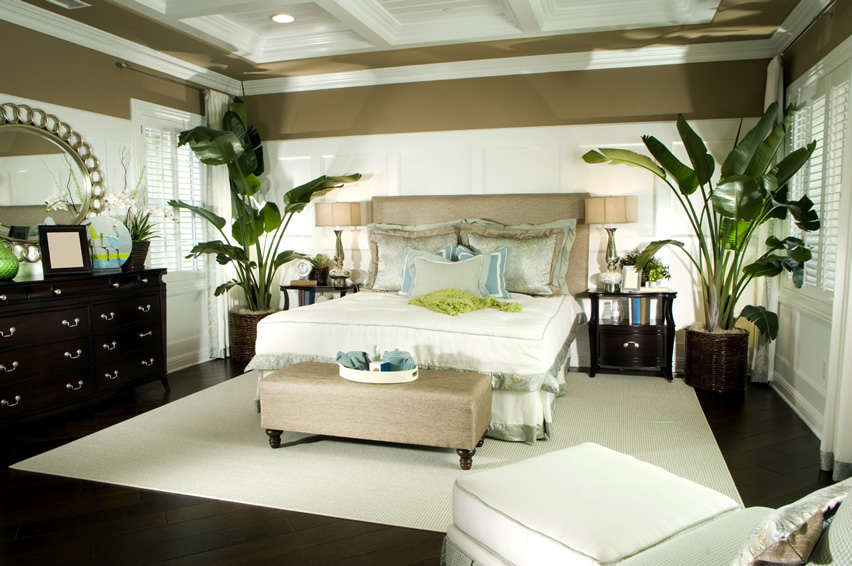elegantly-decorated-master-bedroom