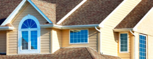 The How's and Why's of Cleaning Vinyl Roof