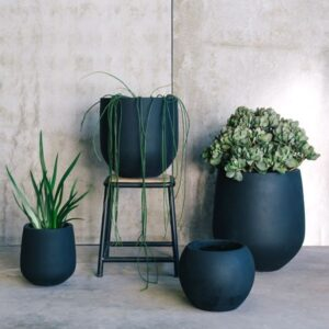 How To Choose The Right Pots For Your Plants