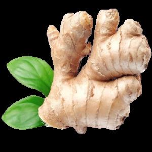 Ginger Rates Inflation Pakistan