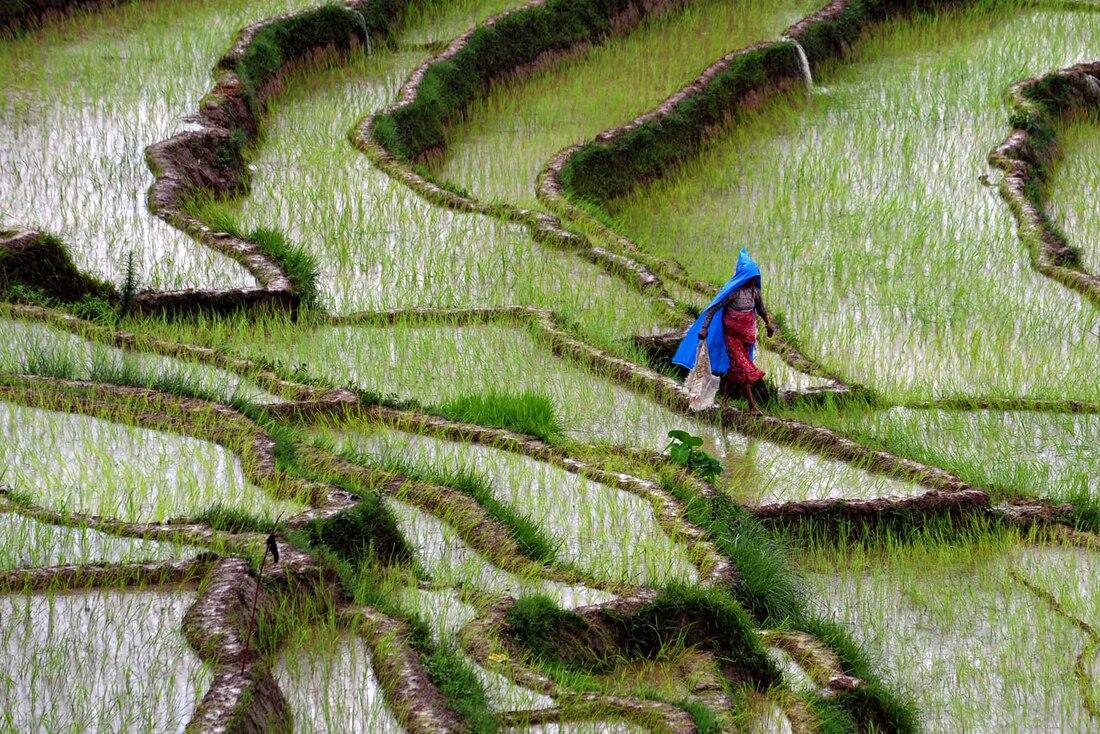 Voyage au Népal pendant la mousson; que faire et à quoi s'attendre ?