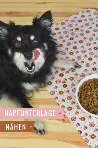 Schnittmuster Napfunterlage für Hunde.