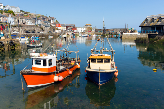 Fish from Cornwall wherever we can!