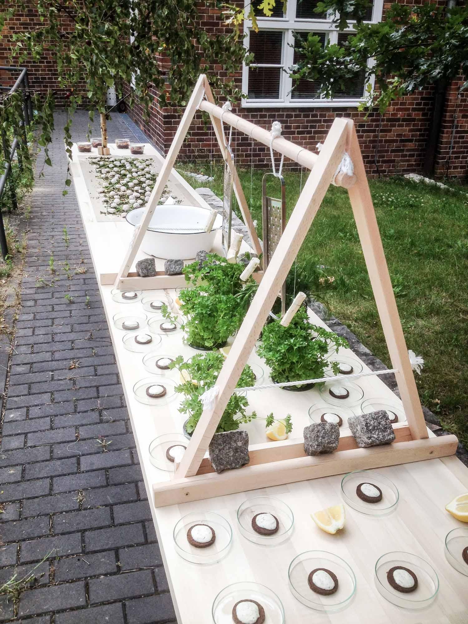 Wild and Root design thinking Food Studio Berlin