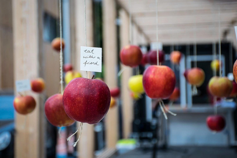 Wild and Root Eventagentur Food Installation