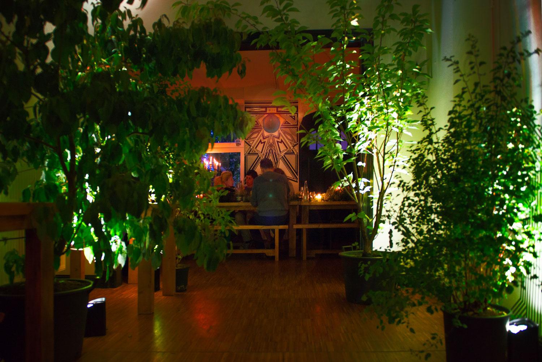 Wild and Root eating design studio