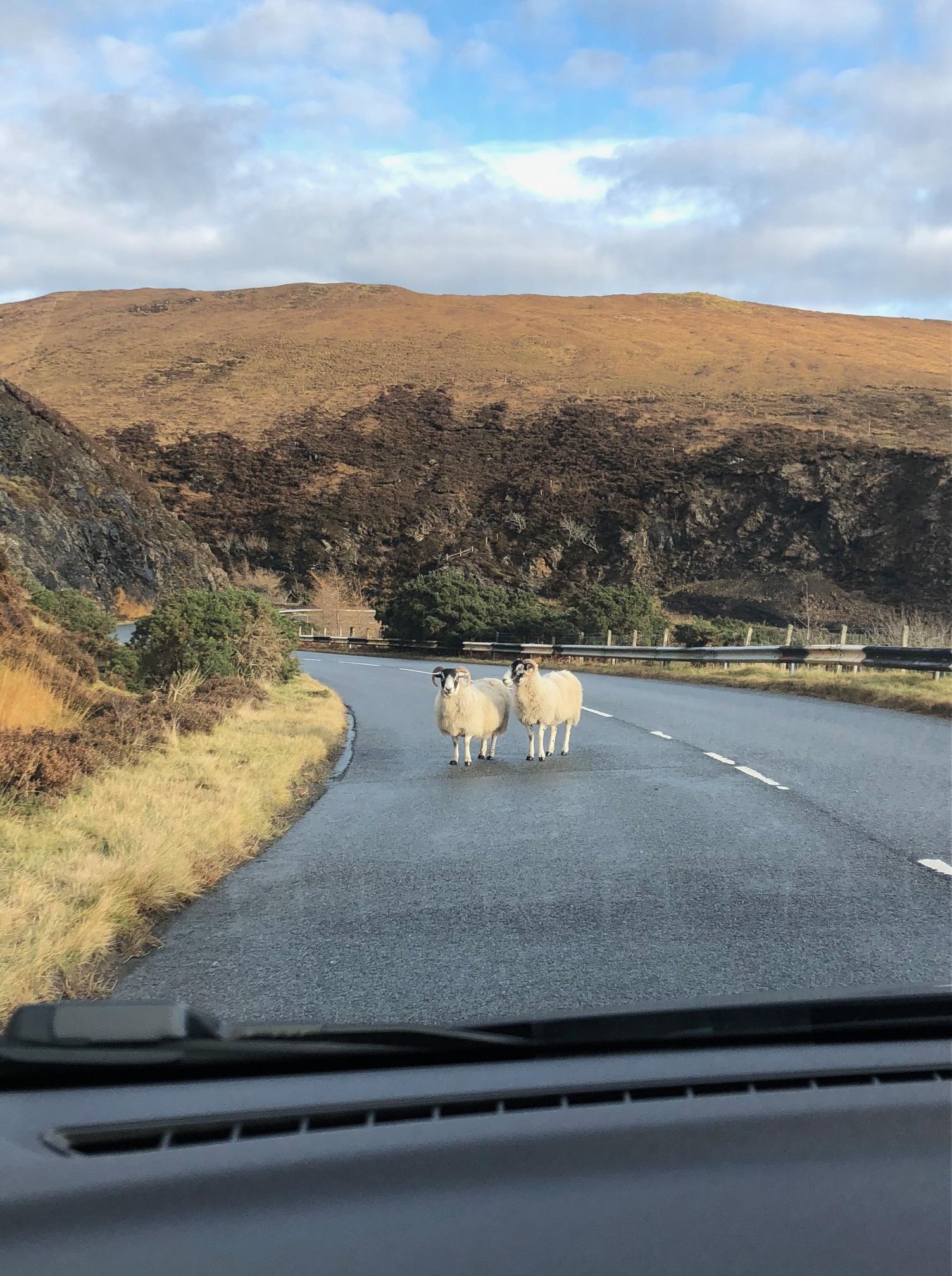 Isle of Skye Photo Diary