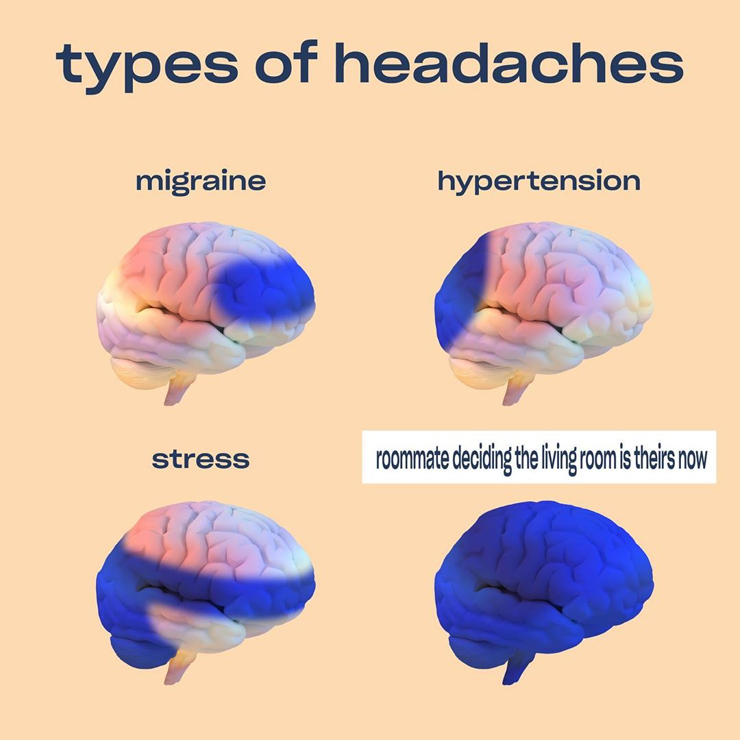 A meme that shows types of headaches and where they appear. Migraines, Hypertension, Stress, and Roommates deciding the living room is theirs now. From Recess's Instagram page.