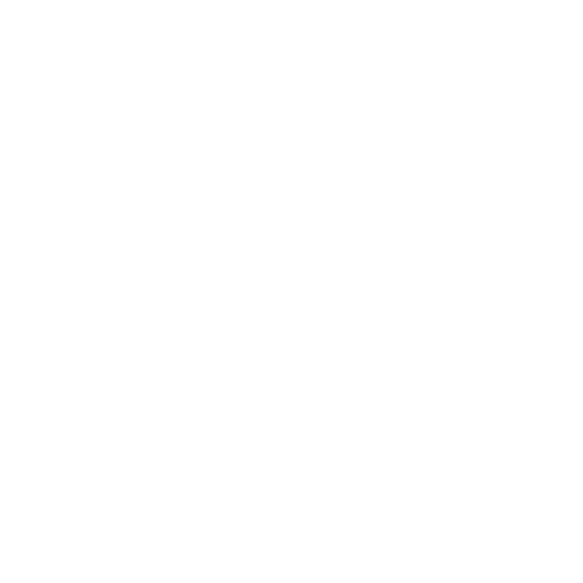 TransformativeTilingLogoWhite