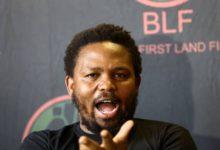 Photo of Ntsiki  Mazwai & Steve Hofmeyr Share Views On Andile Mngxitama's Statements