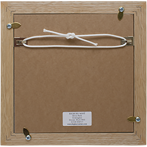 Medal Display Frame Reverse