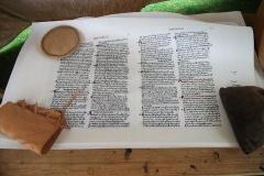 Domesday manuscript