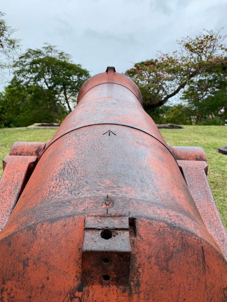 Cañón Fort Fincastle