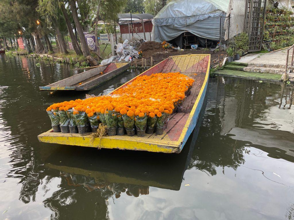 venta de flores en Trajineras