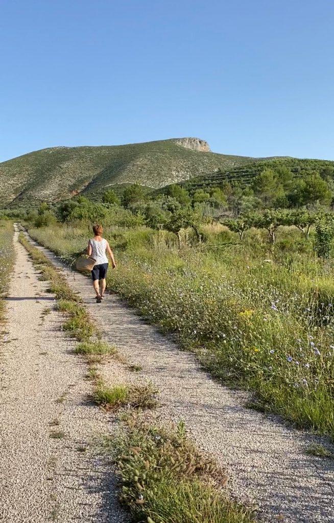 Paseo por La Vall d'Alcalà