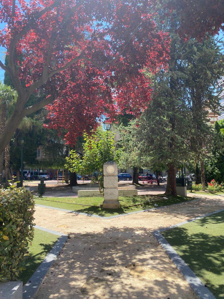 Parterre de Carrer Sant Llorenç