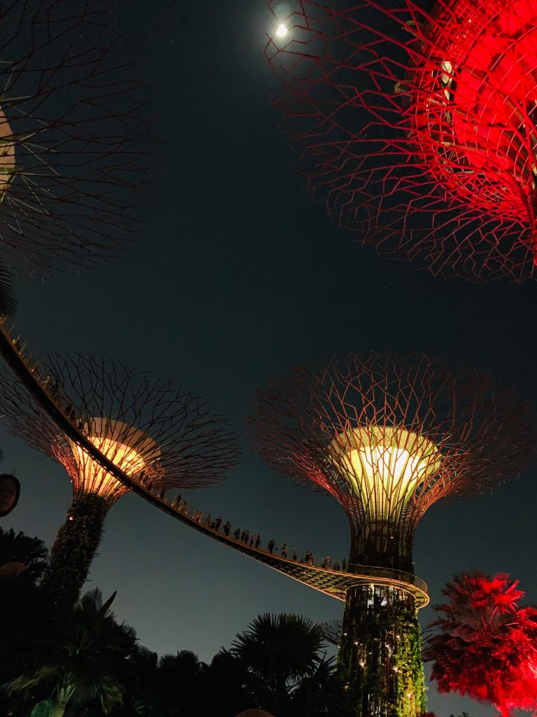Lights show Supertrees