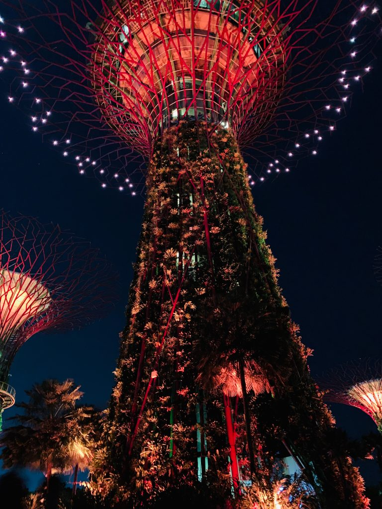 Espectáculo de luces Supertrees