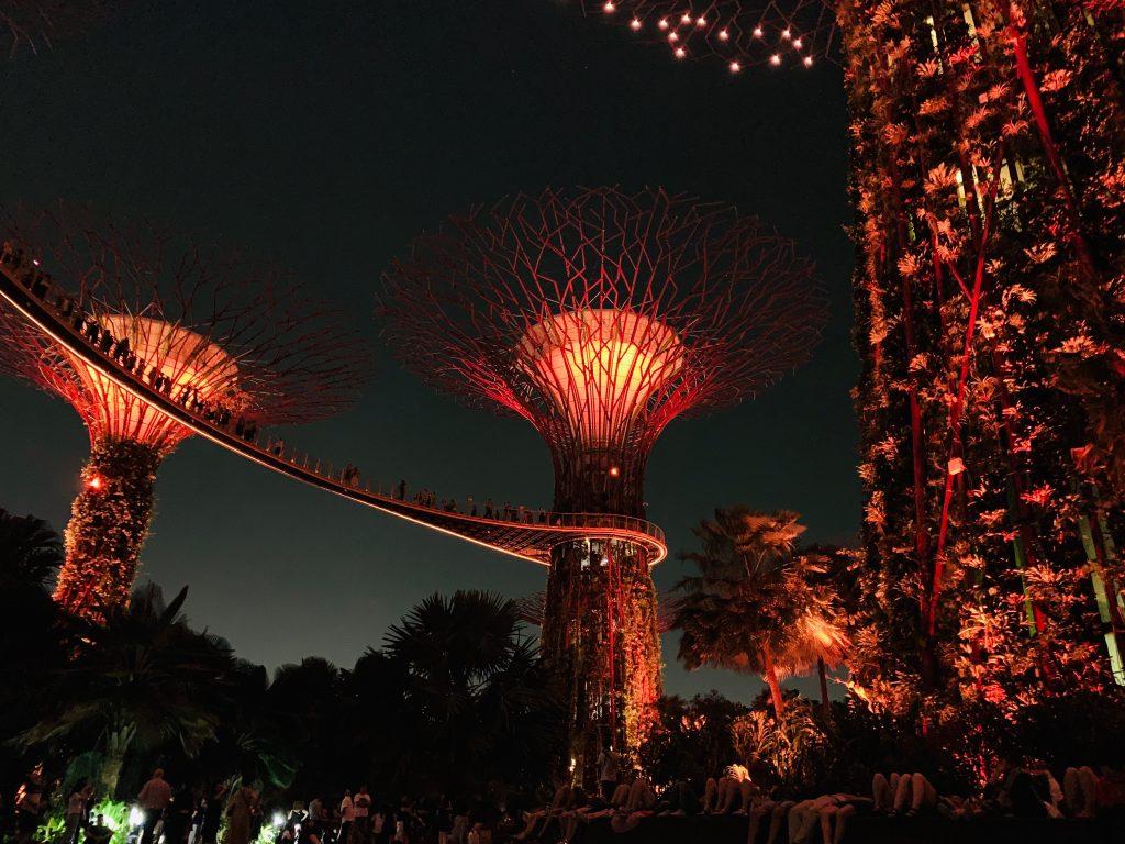 Luces supertrees singapur