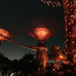 Luces supertrees singapur